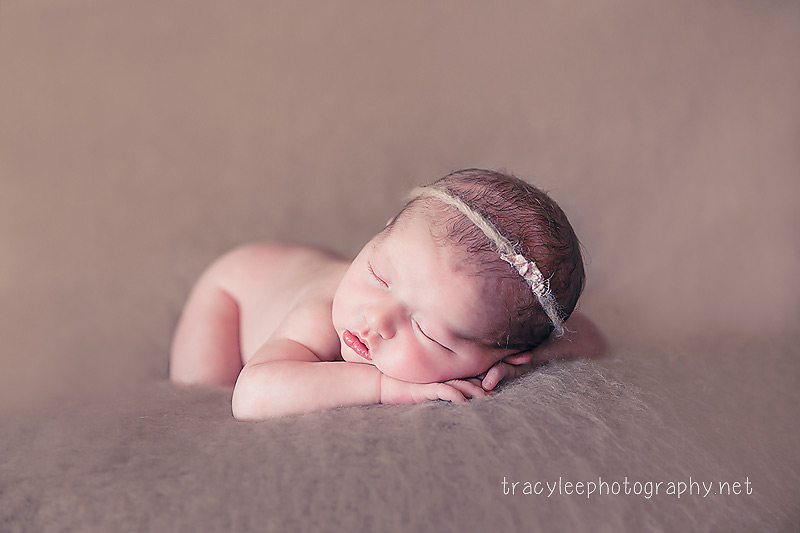 Tracy Lee Photography  I  Newborn Photography